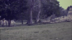 1973: ancient central american temples overshadow sparse woodland area MEXICO Stock Footage