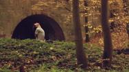 Man doing yoga asana in autumn park against the backdrop of the old arched Stock Footage