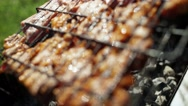 B-B-Q. The coals in the brazier. The meat on the grill Stock Footage