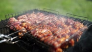 Appetizing roasted meat on the coals. Pork barbecue Stock Footage