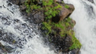 Waterfall closeup in nature with grass and stones. Stock Footage