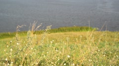 Landscape with river in Russia Stock Footage
