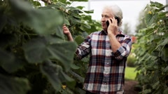 Old woman calling on smartphone in farm greenhouse Stock Footage