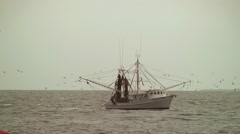 Seagulls swarm shrimp boat Stock Footage