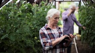 Old woman with tablet pc in greenhouse on farm Stock Footage