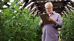Old man with clipboard in greenhouse on farm Stock Footage