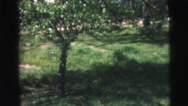 1962: the trees and the greenery in the park always looks great NEW YORK CITY Stock Footage