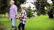 Senior couple walking along summer garden Stock Footage