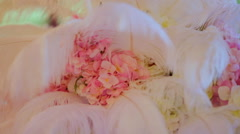 Festive hall is decorated with feathers and flowers Stock Footage