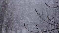 Winter Snowflakes Snow Background Stock Footage
