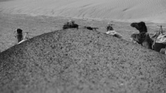 Monochrome camels appearance in desert after sand drifting Stock Footage