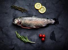 Raw trout, rosemary, tomatoes, lemon Stock Photos