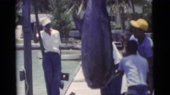 1956: men hang up a large swordfish on a dock with a rope and pulley  Stock Footage