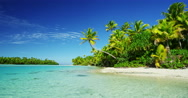 Tropical Island Paradise Stock Footage