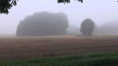 Misty countryside landscape Stock Footage