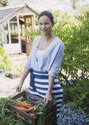 Portrait smiling woman harvesting carrots in garden Stock Photos