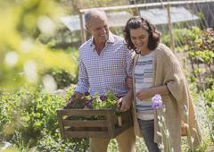 Smiling couple shopping for flowers in plant nursery garden Stock Photos