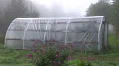 Polyethylene greenhouse in early morning Stock Footage