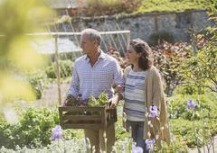 Couple shopping for flowers in sunny plant nursery garden Stock Photos