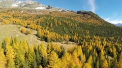Autumn colors - Aerial view in Valmalenco Stock Footage