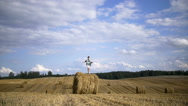Boy jumping on a haystack in a field, slow motion Stock Footage