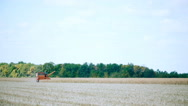 In the field harvester reaps millet Stock Footage