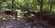 Aerial. Lone girl walking along the river in the forest. Stock Footage