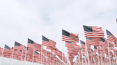 American Flags Waiving Lower Thirds Stock Footage
