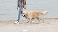 Coastal Walk with Dog Stock Footage