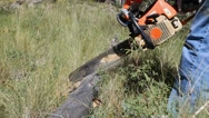 A man cutting a log with a chainsaw Stock Footage