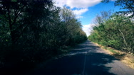 The car goes on the road: on the sides of trees, blue sky Stock Footage