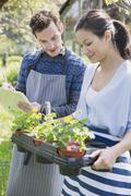 Plant nursery workers with clipboard and potted plants Stock Photos