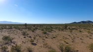Aerial pull back of Joshua trees in the high desert Stock Footage