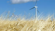 Single wind turbines behind crops Stock Footage