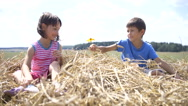 Boy with a girl sitting on the hay, the boy gives a flower girl Stock Footage