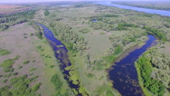 Drone flying over the marshes and rivers Stock Footage
