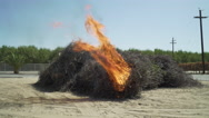 Bundle pile almond branches burn set fire next to orchard Stock Footage