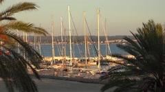 Palma de Mallorca harbor Stock Footage