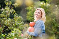 Beautiful young blond woman in her garden harvesting pumpkins Stock Photos