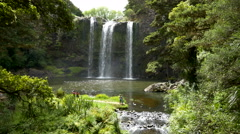 The Whangarei Falls - Northland, New Zealand Stock Footage