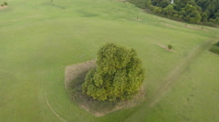Single lonely tree in meadow, pan around shot, aerial footage Stock Footage