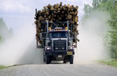 Logging truck in northern Alberta delivering a load of softwood to a pulp and Stock Photos