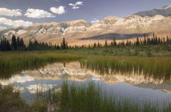 Hawk Ridge, Kootenay National Park, British Columbia, Canada Stock Photos