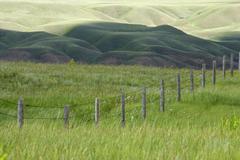 Fence line and field in the prairie badlands near Dorothy, Alberta, Canada Stock Photos