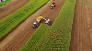 Farm machines harvesting Midwest corn Stock Footage