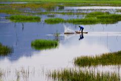 Van Long Natural Reserve in Ninh Binh, Vietnam Stock Photos