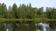 Bank Svir river in northern Russia Stock Footage