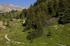 A hiker exploring the trails of Sunshine Meadows, Banff National Park, AB Stock Photos