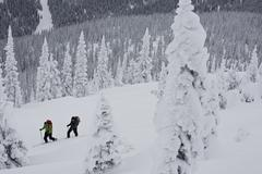 Two men ski touring in Roger's Pass, BC Stock Photos