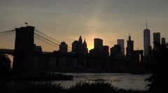 Downtown Manhattan & the Brooklyn Bridge (4k), from Brooklyn, New York. Stock Footage